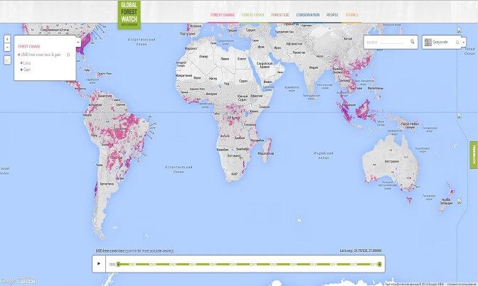 Районы вырубки Лесов на карте мира
