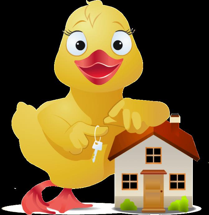 Xml выгрузка недвижимость