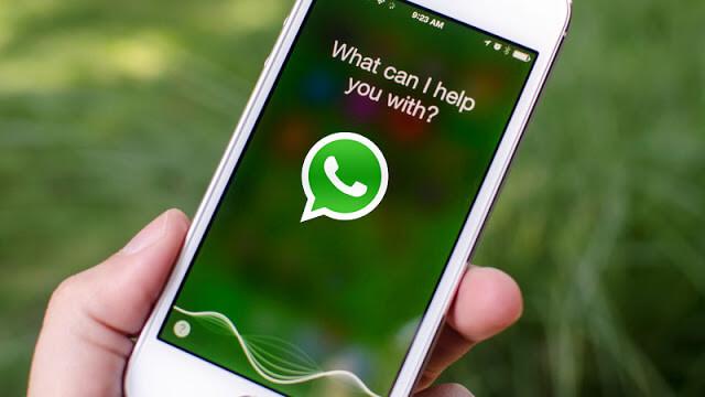 Вскоре высможете переписываться извонить поWhatsApp при помощи Siri