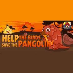 Только на этой неделе можно увидеть обновленную игру Angry Birds